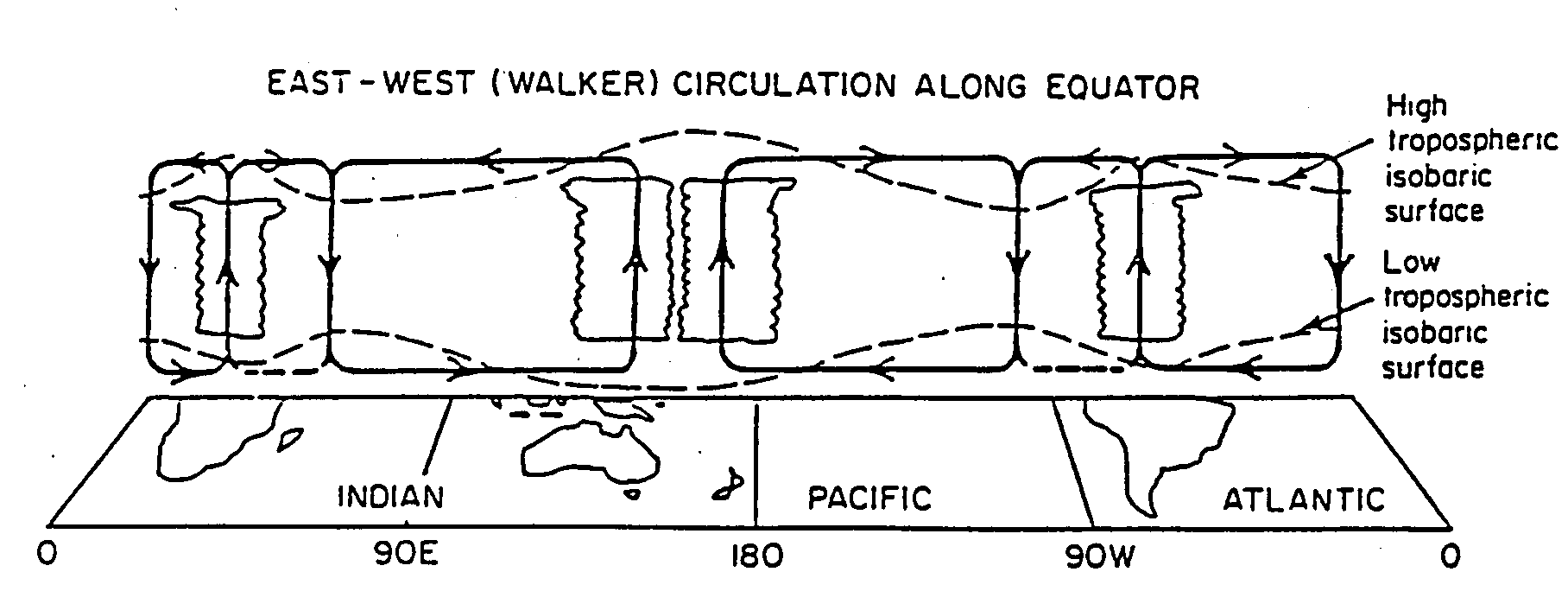 Lectures on tropical meteorology schematic diagram of the longitude height circulation along the equator the surface and 200 mb pressure deviations are shown as dashed lines pooptronica